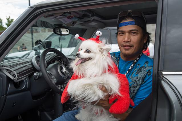 2014 MTTS Pets- Day 1 (07/2014)
