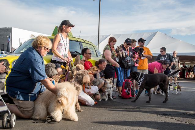 2014 MTTS Pets- Day 5 (07/2014)