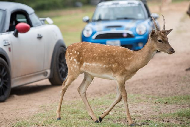 2014 MTTS Places- Day 7 (08/2014)